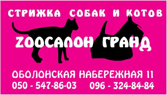 Зоосалон «ГРАНД» Киев. Профессиональная стрижка и тримминг собак